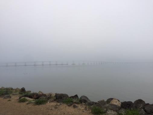 It's a bridge!